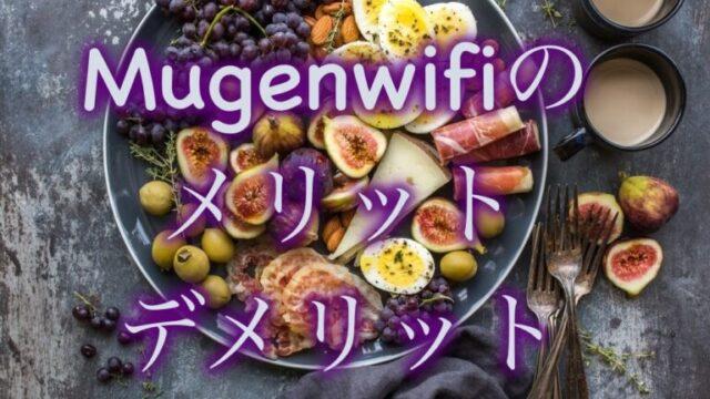 mugejwifi-merit-demerit
